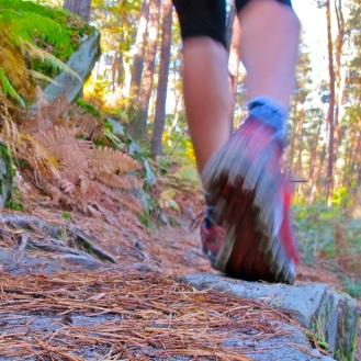 Trail - Némorosa
