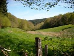 Vallon morvandiau - Dun-les-Places