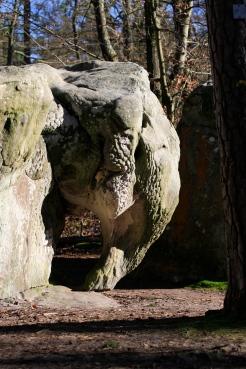 Rocher l'éléphant à Barbizon